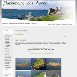 Île Guennioc