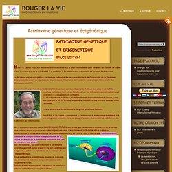Patrimoine génétique et épigénétique