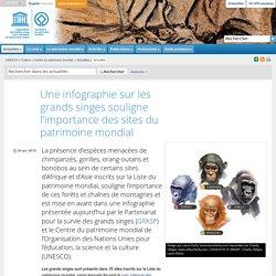 UNESCO Centre du patrimoine mondial - Une infographie sur les grands singes souligne l'importance des sites du patrimoine mondial
