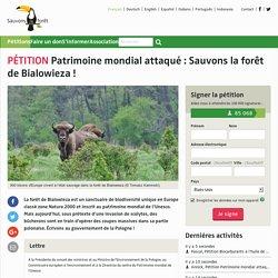 Patrimoine mondial attaqué: Sauvons la forêt de Bialowieza