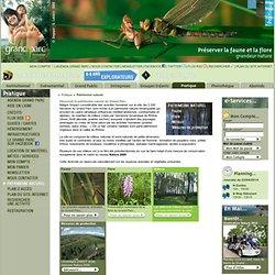 Patrimoine naturel, faune, flore, milieux, site Natura 2000 sur Lyon - Grand Parc Miribel Jonage