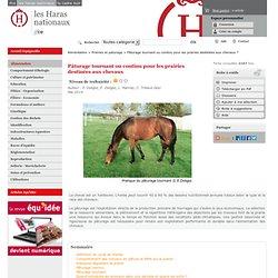 Pâturage tournant ou continu pour les prairies destinées aux chevaux