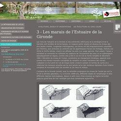 3 - Les marais de l'Estuaire de la Gironde