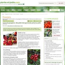 Leçon de paysagisme : Des petits fruits gourmands partout au jardin