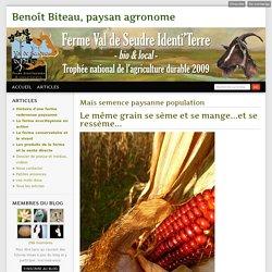 Maïs semence paysanne population - Benoît Biteau, paysan agronome