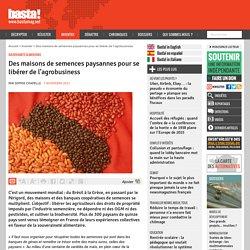 Des maisons de semences paysannes pour se libérer de l'agrobusiness - Souveraineté alimentaire