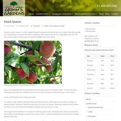 Grimm's Gardens