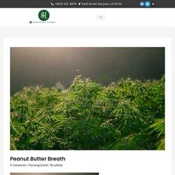 Peanut butter breath - Hemp Plant Nursery