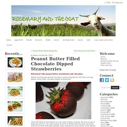 Rosemary and The Goat » Peanut Butter Filled Chocolate Dipped Strawberries