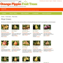 Buy fruit trees online