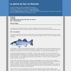 Pêche_ bar_en_Manche