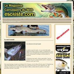 La pêche des carnassiers au mort manié