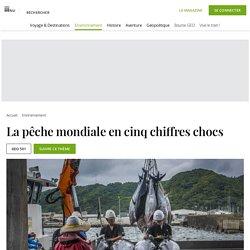 GEO 21/12/20 La pêche mondiale en cinq chiffres chocs