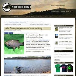 Pêche feeder / quiver / waggler: Pêche fine et gros poissonsau lac de Pareloup