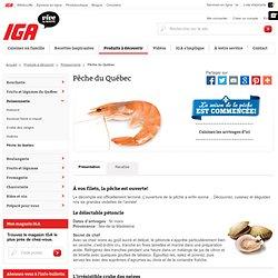 Pêche du Québec