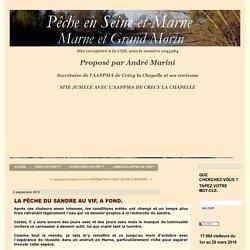LA PÊCHE DU SANDRE AU VIF, A FOND. - La pêche en Seine-et-Marne, Marne et Grand Morin