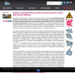 BLOOM et les pêcheurs portent plainte pour pêche électrique illégale dans les eaux françaises