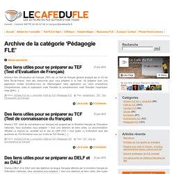 Pédagogie FLE