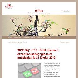 TICE Déj' n°18 : Droit d'auteur, exception pédagogique et antiplagiat, le 21 février 2013