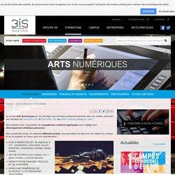 Programme pédagogique de la formation Arts Numériques