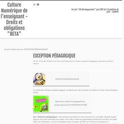 """EXCEPTION PÉDAGOGIQUE – Culture Numérique de l'enseignant – Droits et obligations """"BETA"""""""