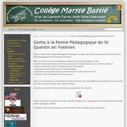 Sortie à la Ferme Pédagogique de St Quentin en Yvelines - Collège Maryse Bastié