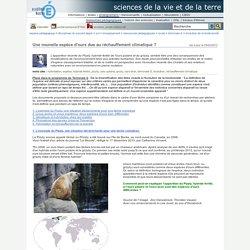 sciences de la vie et de la terre - Une nouvelle espèce d'ours due au réchauffement climatique ?