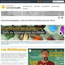 Continuité pédagogique : Idées de défis scientifiques pour les élèves
