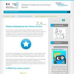 Usages pédagogiques des réseaux sociaux - ENT et Travail collaboratif - DANE Nice