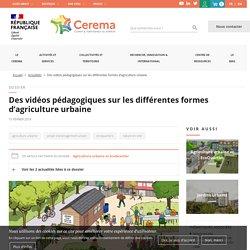 Des vidéos pédagogiques sur les différentes formes d'agriculture urbaine
