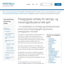 Pedagogiske verktøy for lærings- og mestringstilbudene Helt sjef! - mestring.no
