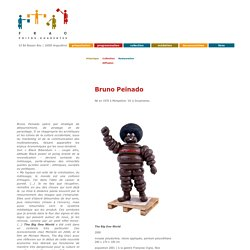 Bruno Peinado, collection FRAC Poitou-Charentes