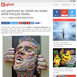 Les peintures en reliefs du street artist français Shaka