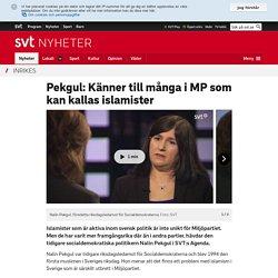 Pekgul: Känner till många i MP som kan kallas islamister