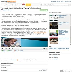 Paul Pelosi Jr Charged With New Energy – Fighting for the Hemp Mar..