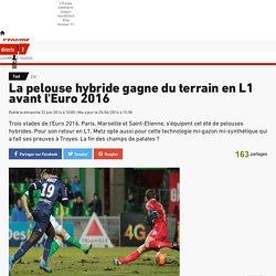 Eco - La pelouse hybride gagne du terrain en L1 avant l'Euro 2016