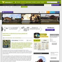 WIKIAGRI 24/05/13 Huile d'olive, la volte-face de la France pénalise les consommateurs