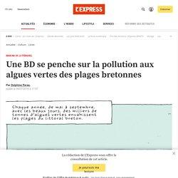 Une BD se penche sur la pollution aux algues vertes des plages bretonnes