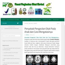 Penyebab Pengecilan Otak Pada Anak dan Cara Mengatasinya