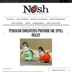 Penguin Sweaters provide Oil Spill Relief - NoshNosh