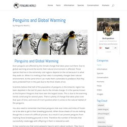 Penguins and Global Warming - Penguin Facts and Information