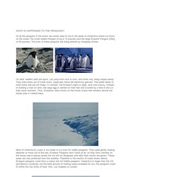 Penguinscience - understanding penguin response to climate and ecosystem change