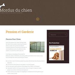 Pension & Garderie Pour Chien