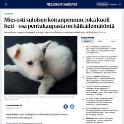 Mies osti suloisen koiranpennun, joka kuoli heti – osa pentukaupasta on häikäilemätöntä - Kaupunki