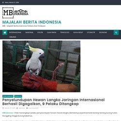Penyelundupan Hewan Langka Jaringan Internasional Berhasil Digagalkan, 9 Pelaku Ditangkap - Majalah Berita Indonesia