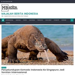 Penyelundupan Komodo Indonesia Ke Singapura Jadi Sorotan Internasional - Majalah Berita Indonesia