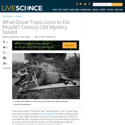 What Drove Tsavo Lions to Eat People? Century-Old Mystery Solved