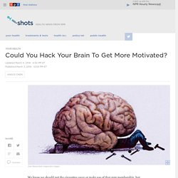 People Learn To Turn On The Motivation Center In The Brain