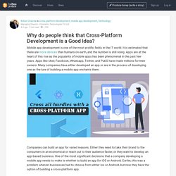 Why do people think that Cross-Platform Development is a Good Idea?