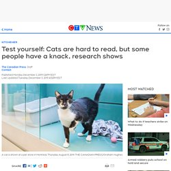 Cats are hard to read, but some people have a knack, research shows